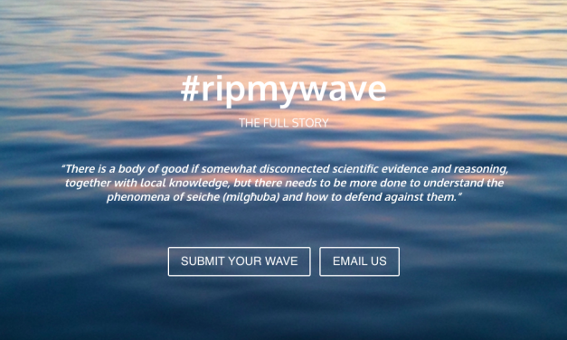 The Science behind the Wave
