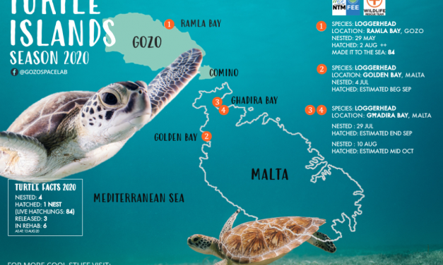Turtle Islands Map: Malta and Gozo